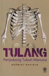 Tulang Penyokong Tubuh Manusia